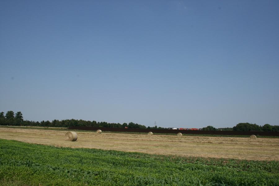 Heuballen- (2)